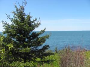 Looking out to the Bay of Fundy from Victoria Beach.