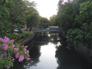 One of the remaining klongs.