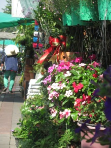 A flower stall near Payap pier where I got my ferry.