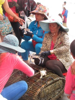 Cambodian lady selling the blue crab.