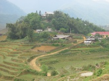 Tiered hillside in Sapa