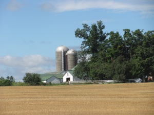 Farm scene near Georgetown.
