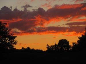 Sunset outside Belfast.