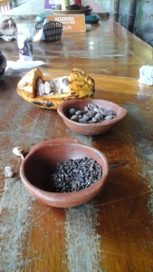!st stage - the raw cocoa beans.