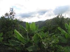 Near Vilcabamba