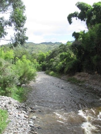 Another river which runs through the bio-reserve.