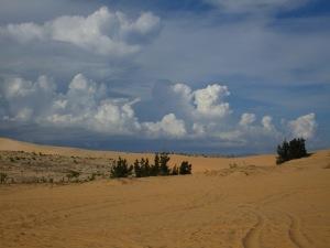 On the white dune.