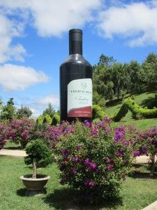 Advertising Dalat wine at the Park.
