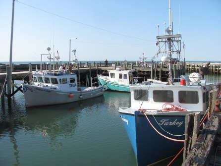 Fishing boats on the Bay of Fundy.