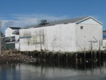 The old Casey fish processing plant at Victoria Beach.