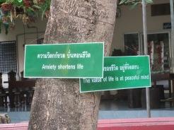 The Thai philosophy