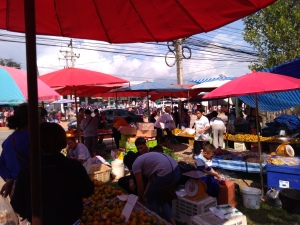 A short stop over at the Chiang Dao market on our way back