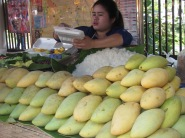Lots of mangos to be had