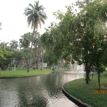 Peaceful morning in Puak Park