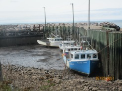 Lobster boats waiting to go out to sea.